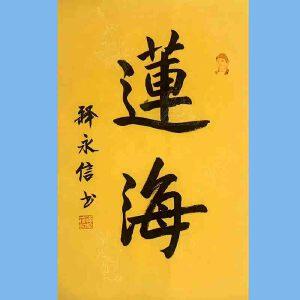 第九十十一十二届全国人大代表,少林寺方丈释永信(莲海)