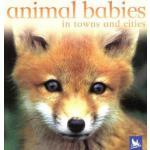 【预订】Animal Babies in Towns and Cities