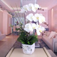 蝴蝶兰仿真花套装客厅假花家居饰品装饰花餐桌摆放花艺过胶