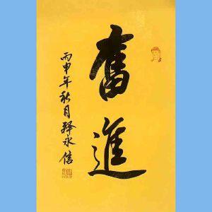 第九十十一十二届全国人大代表,少林寺方丈释永信(奋进)