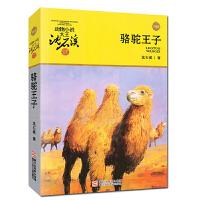骆驼王子-动物小说大王沈石溪品藏书系升级版 青少年儿童文学动物小说故事书 8-15岁三四五六年级中小学生课外阅读书籍