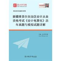 2020年新疆维吾尔自治区会计从业资格考试《会计电算化》历年真题与模拟试题详解/从业执业资格考试用书 教材试题配套 复习