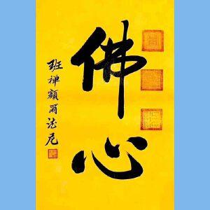 中国佛教协会副会长,中国佛教协会西藏分会第十一届理事会会长十三届全国政协委员班禅额尔德尼确吉杰布(佛心
