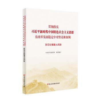 防范化解重大风险(贯彻落实习近平新时代中国特色社会主义思想在改革发展稳定中攻坚克难案例) 不忘初心牢记使命重要学习辅导读本、攻坚克难案例丛书