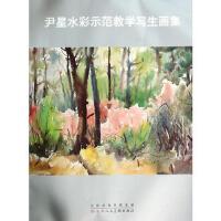 尹星水彩师范教学写生画集 9787530559888 尹星 绘 天津人民美术出版社