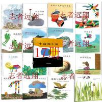 李欧李奥尼经典全集1-15套装作品系列小黑鱼和他的朋友们田鼠阿佛一寸虫 小蓝和小黄共17册03《亚历山大和发条老鼠》