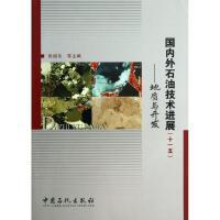国内外石油技术进展 中国石化出版社