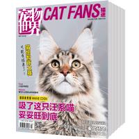宠物世界猫迷 家庭生活期刊2018年全年杂志订阅新刊预订1年共12期3月起订