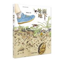 新版:地面地下(中国原创生态绘本,清华附小老师倾情推荐)
