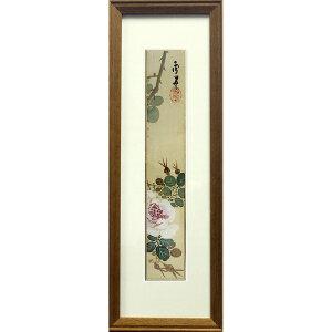 日本 月季花