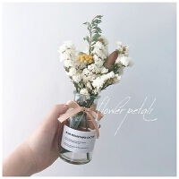 勿忘我满天星干花花束摆件家居摆设花瓶小清新永生花客厅插花Q 花瓣