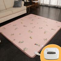 水暖毯双人水暖垫移动电热地毯地热垫家用水暖地垫183*200