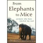 【预订】From Elephants to Mice: Animals Who Have Touched My Sou