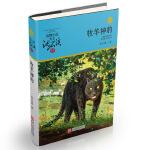 动物小说大王沈石溪・品藏书系:牧羊神豹(升级版)