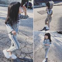 女童套装春装2018新款韩版时尚洋气两件套宝宝长袖连帽运动服 90码 建议身高85-95