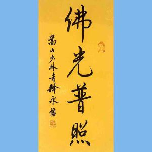 第九十十一十二届全国人大代表,少林寺方丈释永信(佛光普照)