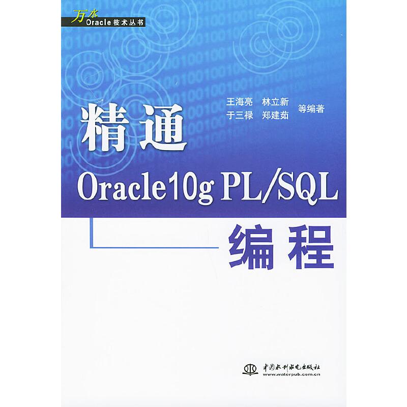 精通Oracle10g PL/SQL编程/万水Oracle技术丛书 PDF下载