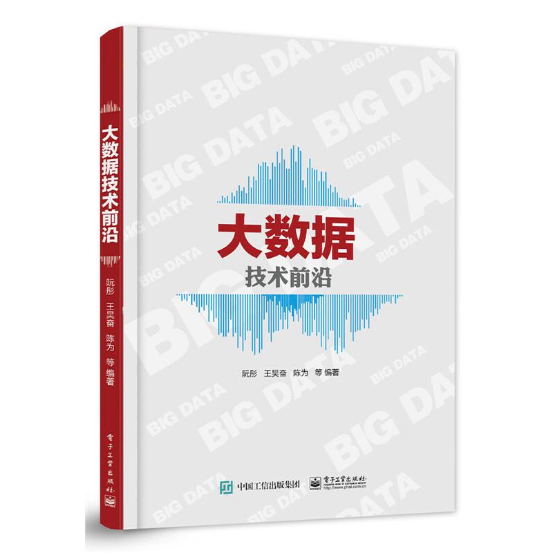 大数据技术前沿 PDF下载