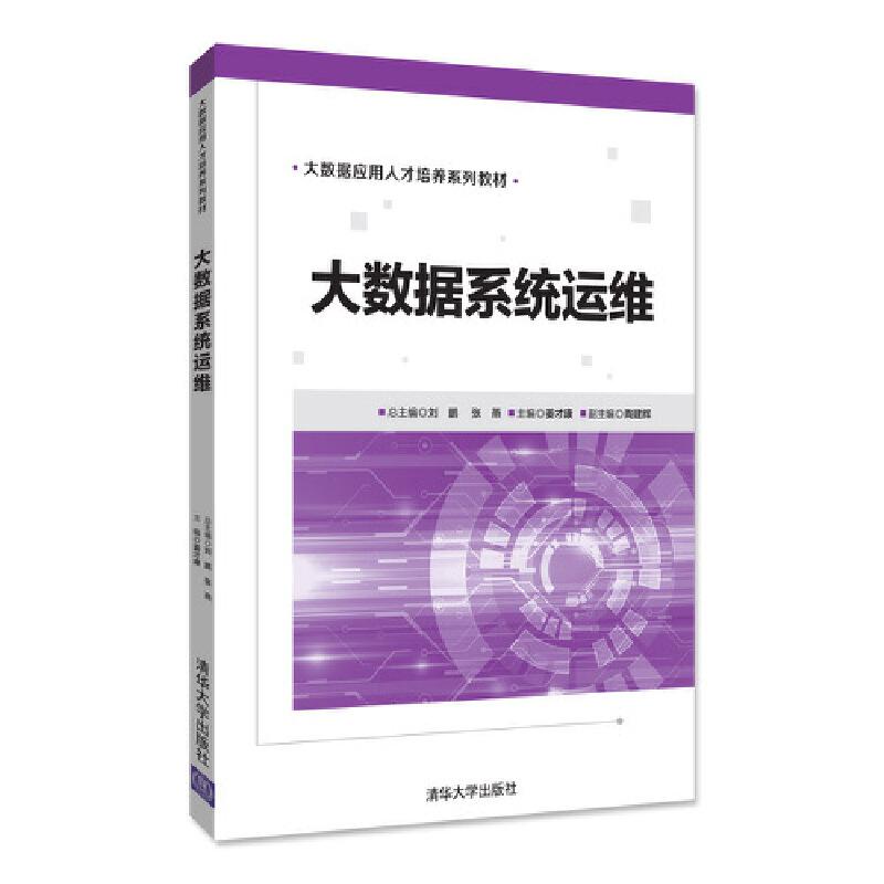 大数据系统运维 PDF下载