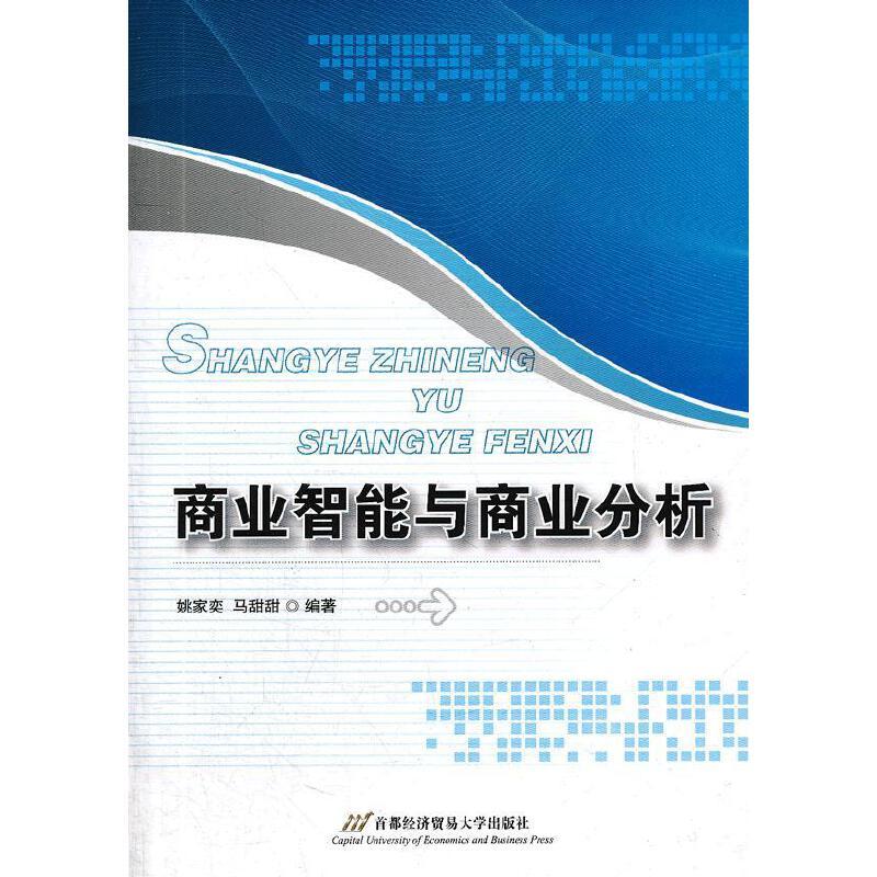 商业智能与商业分析 PDF下载